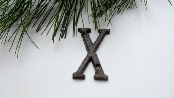 Písmeno X