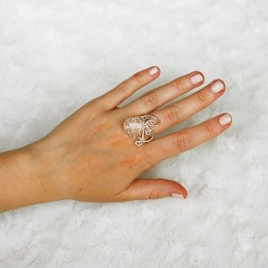 prstenn55