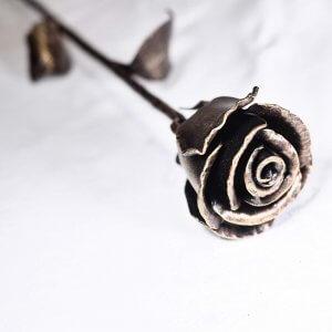 Radotin Roses