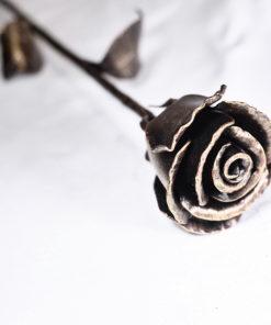 Radotínská růže